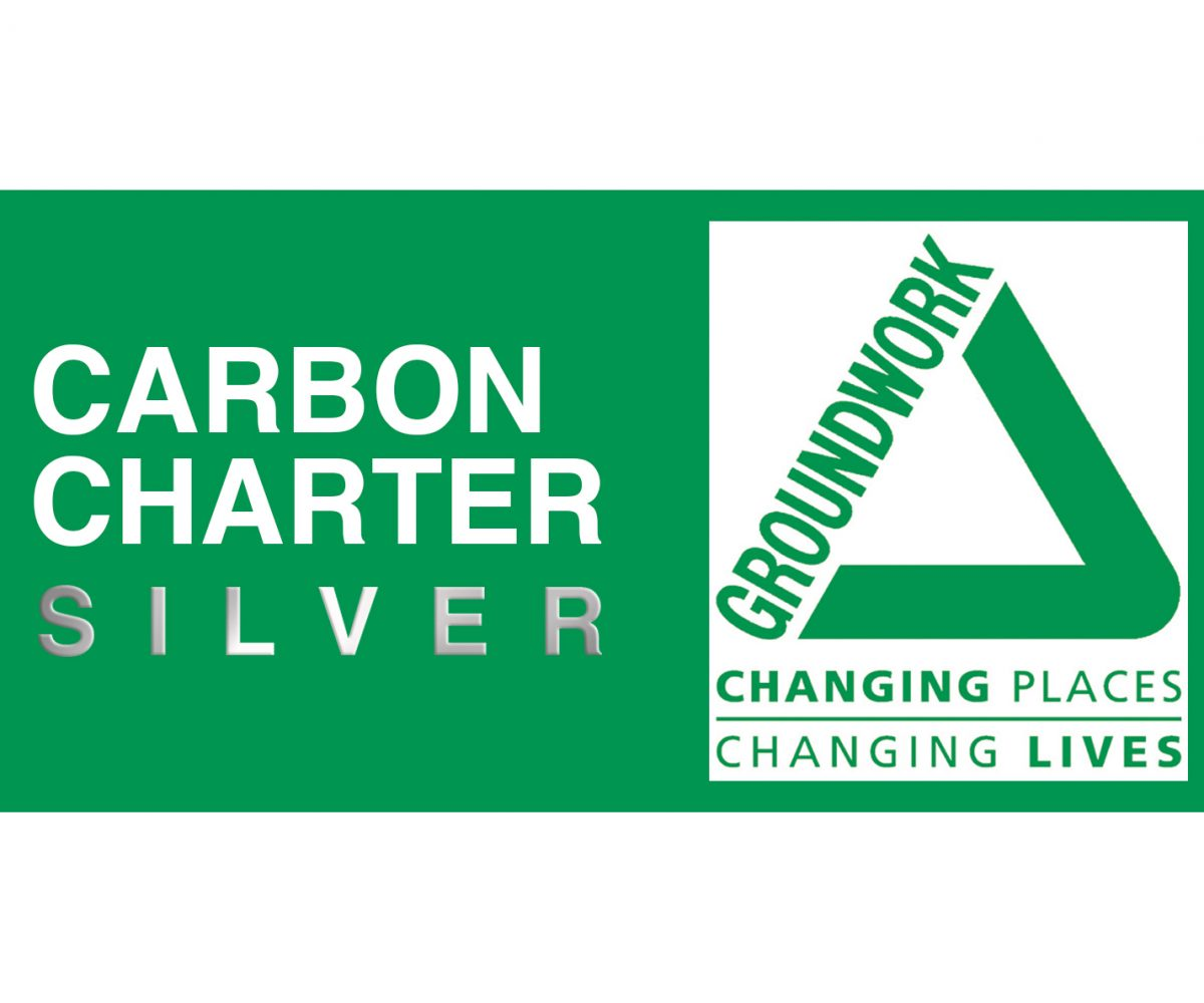 Carbon charter silver